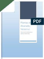 Plantas Medicinales de Alvarado,Veracruz