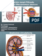 Circulación y VFG.pptx