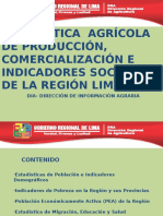 ESTADISTICAS DE LA REGION LIMA (18-06-2012).pptx
