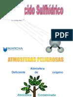 Capitulo 07_acido Sulfhidrico