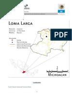 Loma Larga