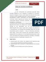 CONTROL DE BARNICES ENVASES.docx
