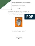 Medicion Clima Organizacional Trujillo 2009