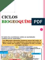 Ciclos-Biogeoquímicos-14b