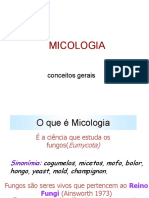 8.micoses.pdf1748049060