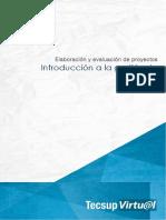 Formulacion y Evaluacion de Proyecto U1