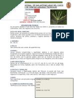Clasificacion Herbario Listo Terminado Listojavier Royer Anival