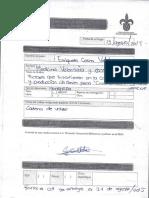 Corona Vidal, Enriqueta factores que intervienen en la comercializacion y produccion del limon en cuitlahuac.pdf