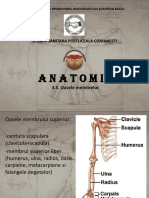 Anatomie3.2