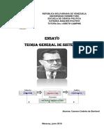 TEORIA GENERAL DE SISTEMA ENSAYO.pdf