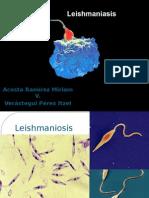 Leishmaniosis