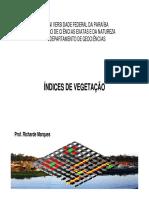 Aula_indices de Vegetação