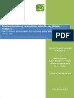 2010_rep_fuentes_vehiculares.pdf