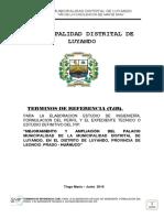 Td Rr Municipalidad Distrital de Luyando _ 03 Estudios Del Pip Jun 2016