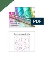 Bioenerg Tica e Metabolismo