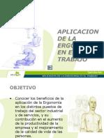 Aplicacion de La Ergonomia en El Trabajo_vo.2005
