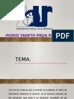 Presentacion Flaca