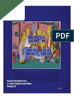 MAPA FAMILIAR.pdf