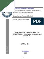 Opțional - Reintegrarea Infractorilor - Strategii Și Program(2)