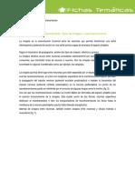 control_nervioso.pdf