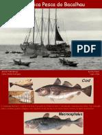 A Heroica Pesca Do Bacalhau