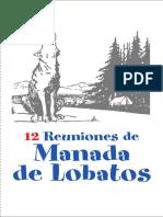 12 Reuniones Manada 2015