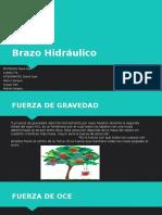 Brazo Hidraulico