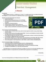 Use of Indigo as Green Manure