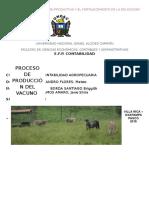 Informe Del Proceso Del Vacuno