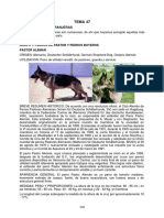 07_12_03_TEMA47.pdf