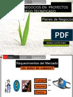 Exposicion planes de negocios Huacho.ppt