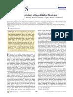 leng2012.pdf