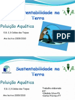 poluiçao aquatica