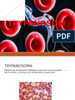 trypanosoma-131022202032-phpapp01