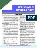 5-Morphology of Flowering Plants