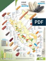 Razas Maiz Peru
