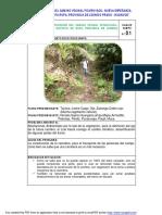 Hoja para recoleccion de datos en campo del EIA de la Carretera en Picuruyacu