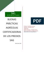 Informe Buenas Prácticas Agrícolas Certificadoras de Los Predios Sag