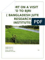 REPORT ON A VISIT TO TO BJRI.docx