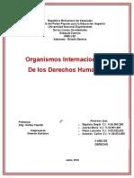 Organismos Internacionales en Cuanto a La Protección de Los Derechos Humanos