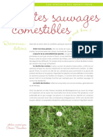 Atelier Plantes Sauvages