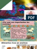 ENZIMAS-ALIMENTO