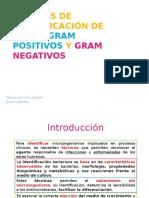 Pruebas Bioquímicas de Gram Positivos y Negativos