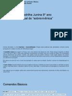 """Quadrilha Junina 9° ano Manual de """"sobrevivênica"""""""