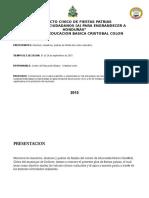 PLAN CIVICO.docx