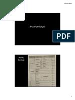 Evolusi Makro.pdf