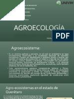 SAZJ_Agroecosistema (2).pdf
