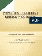 Principios, Derechos y Sujetos (2) (1)