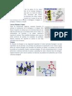 moleculas biologicas.docx