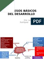 7 Procesos Básicos Del Desarrollo